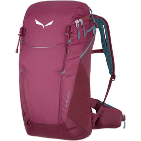 SALEWA Alp Trainer 20 Rugzak Dames, tawny port